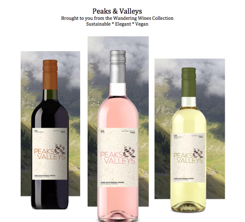 Vegan Wine & Food Tasting - SoFlo Card Launch @ Vinos on Galt