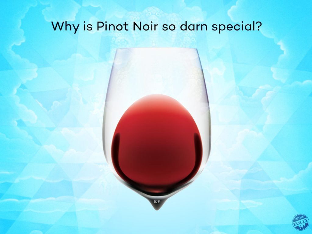 Pinot Noir Wine & Food Pairing @ Vinos on Galt